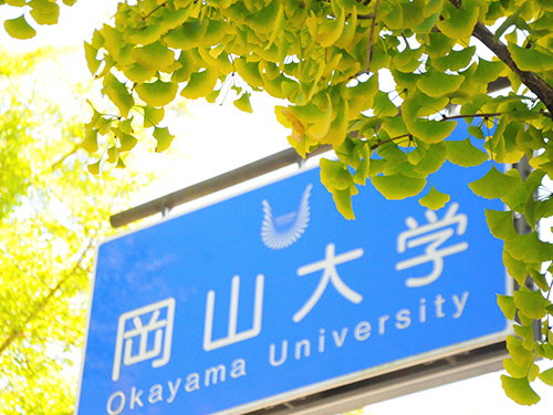 Phlebotomy top history undergraduate programs